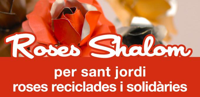 roses-shalom2